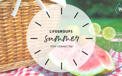 Life Group Summer